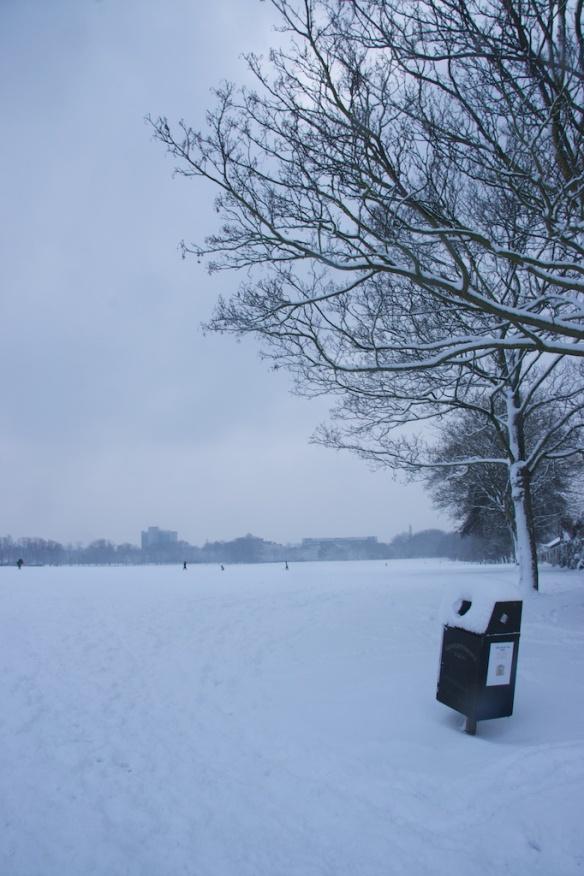 四處都是雪白的積雪